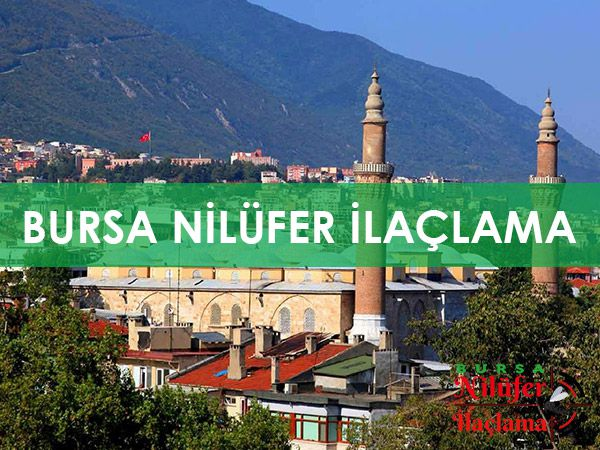 https://www.bursaniluferilaclama.com/wp-content/uploads/2020/09/BURSA-NILUFER-ILACLAMA.jpg