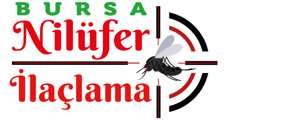 https://www.bursaniluferilaclama.com/wp-content/uploads/2020/09/bursaniluferilaclama.com-logo.png