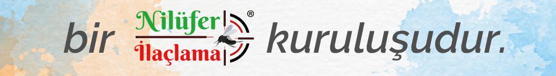 https://www.bursaniluferilaclama.com/wp-content/uploads/2021/06/nilufer-ilaclama-kurulusudur-1.png